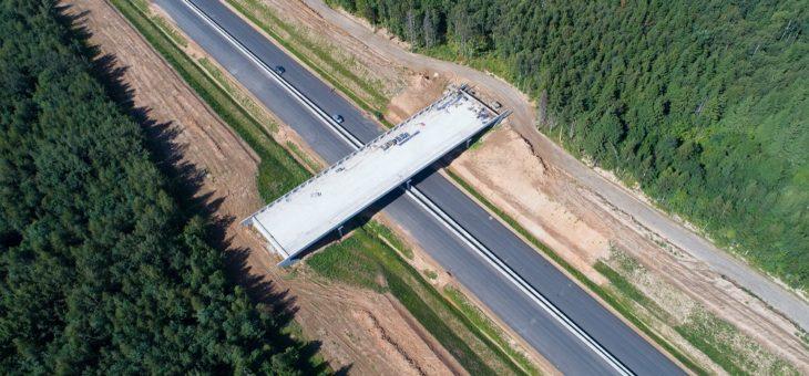 На ЦКАД-3 в Подмосковье построили второй в стране мостовой экодук