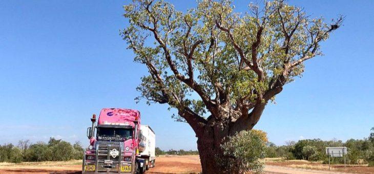 Бумажный тахограф и мешки с костями: 40 часов с австралийской дальнобойщицей